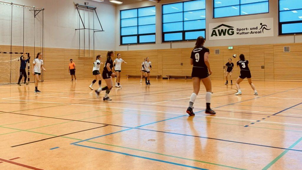 Barleben Handball